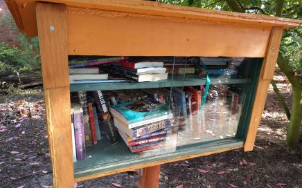 Little free library. Photo by Jennifer Willis.