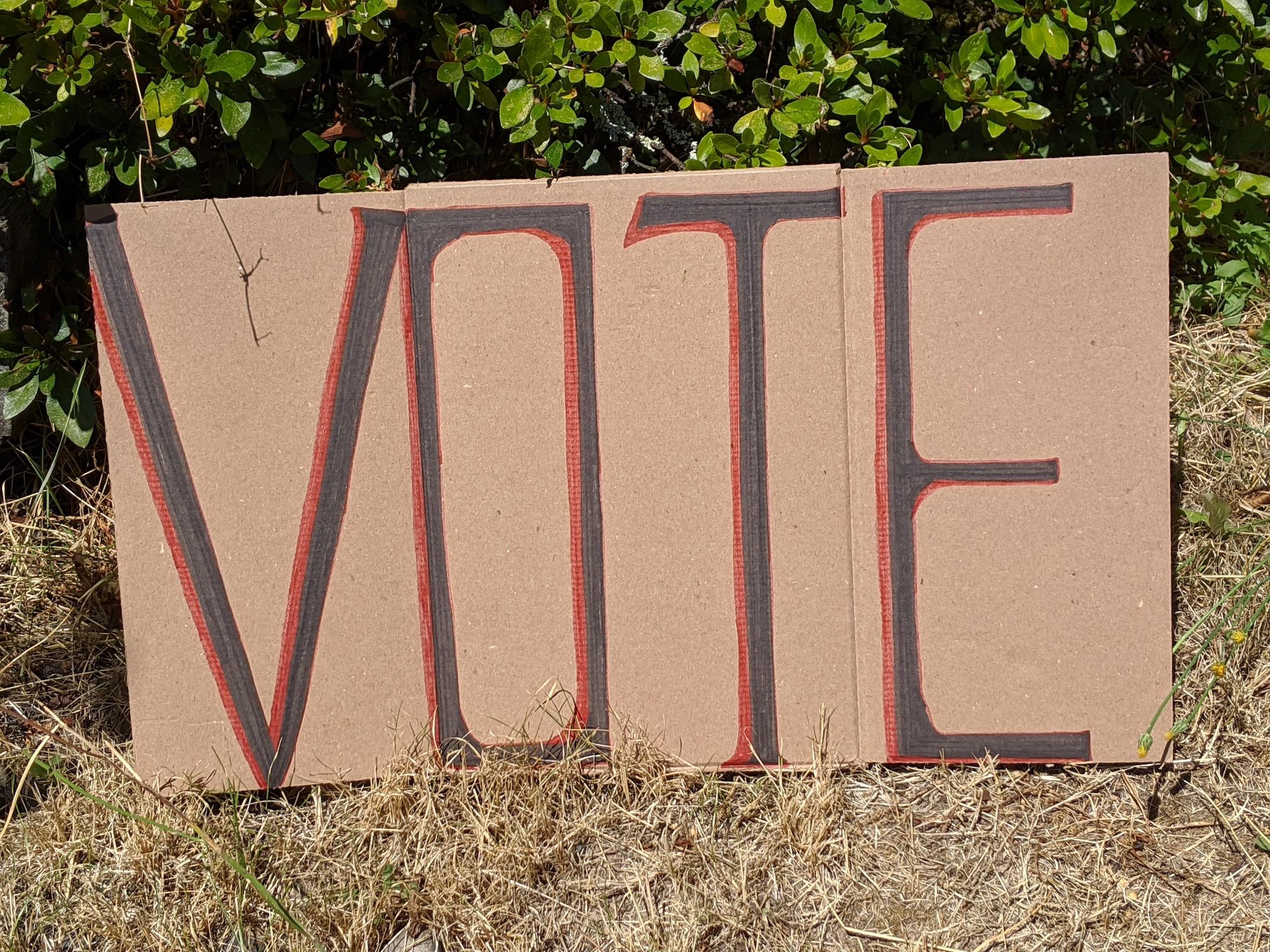 """""""VOTE"""" protest sign."""